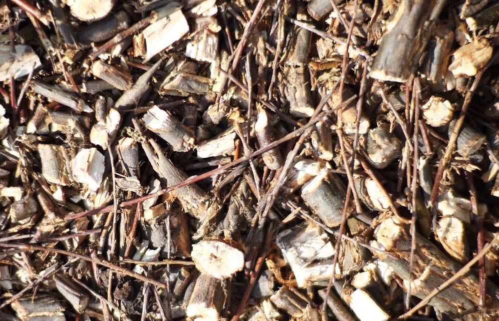 Versnipperde wilgentakken worden moestuinpaden